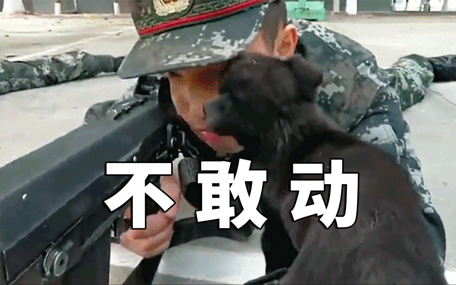 被小奶狗偷亲,兵云豹感动不敢动哥哥体会恋生死图片