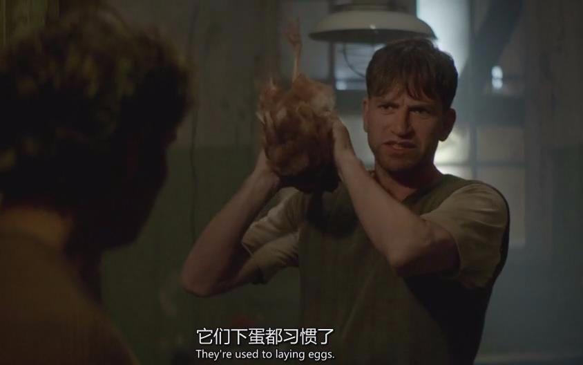 世界上男人最大的鸡儿_【牛叔】人与兽之间不可说的秘密《男人与鸡》略带恐怖的喜剧片