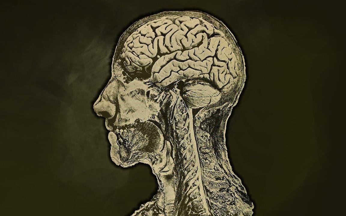 一位女性在2小时内喝了1升酱油来给肠道排毒,这是她大脑的变化