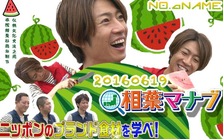 【No.A Name字幕组】相叶学20160619 学习日本的名牌食材!富里西瓜篇