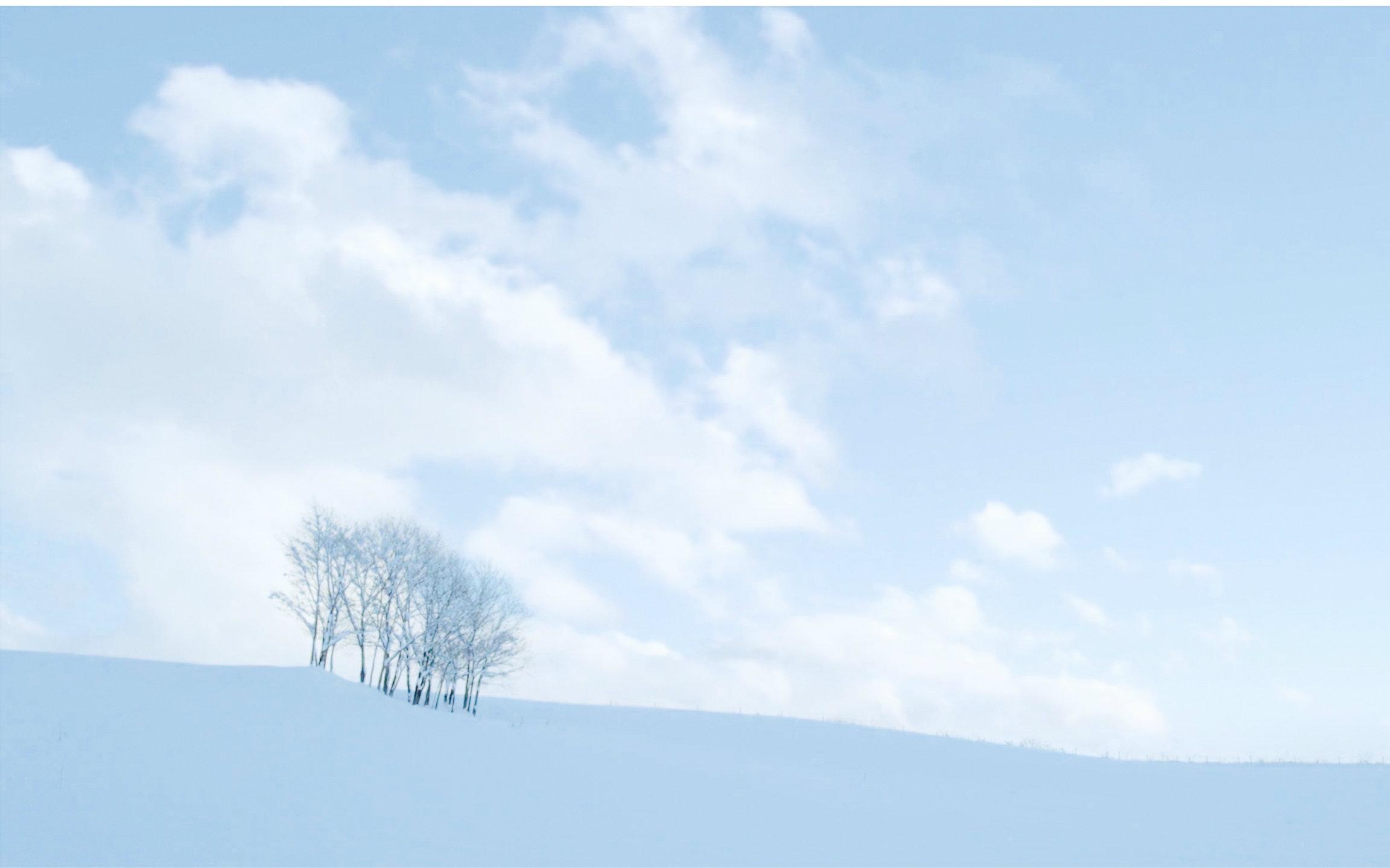 【电影小森林】唯美风景剪辑 冬春篇图片