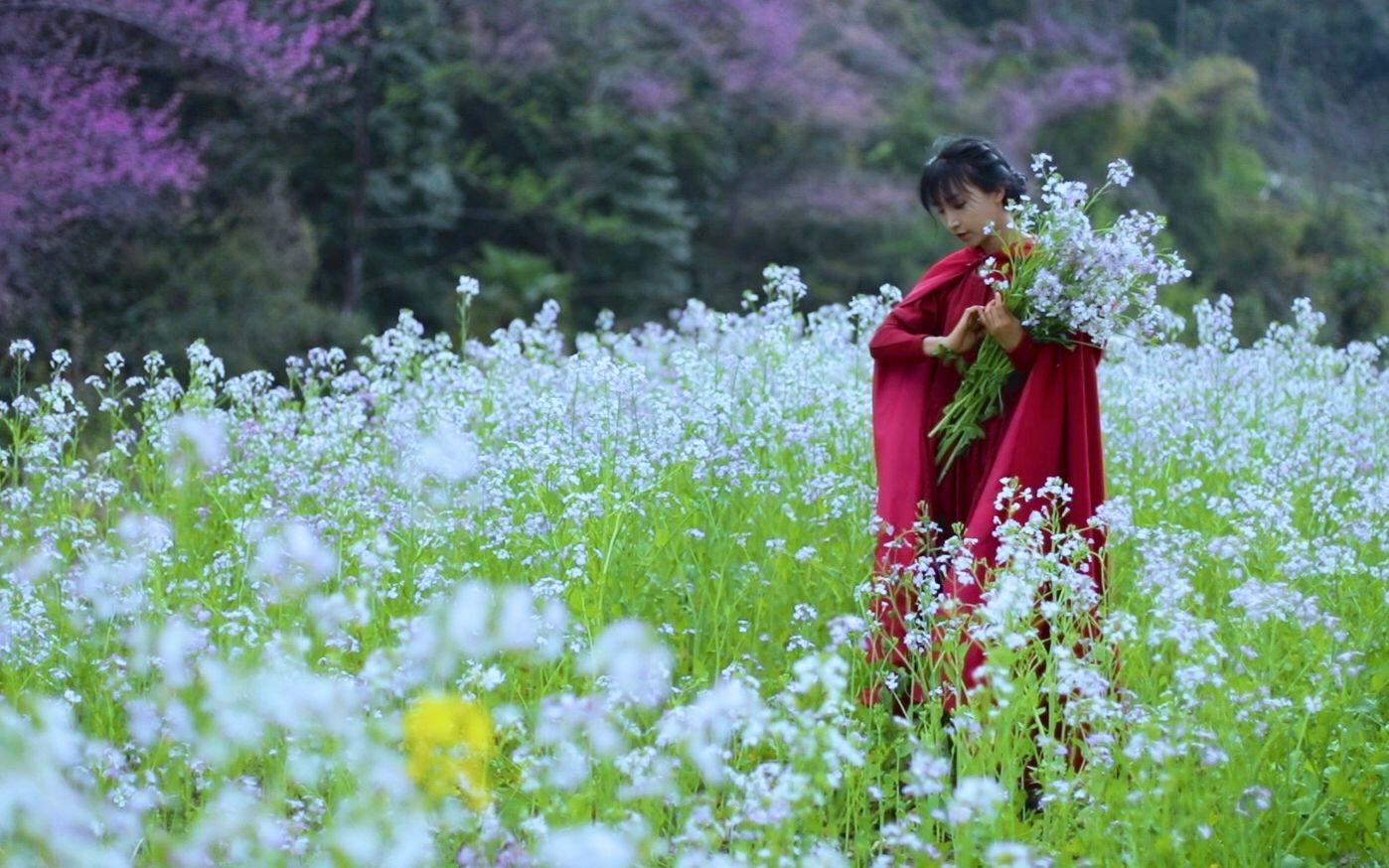 【桃花节】骑马踏青,取花为食,才不辜负春日好时节——上巳节