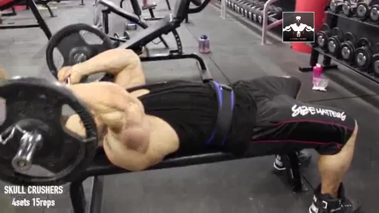 铸肌健身:职业健美运动员教你训练出马蹄状的三头肌