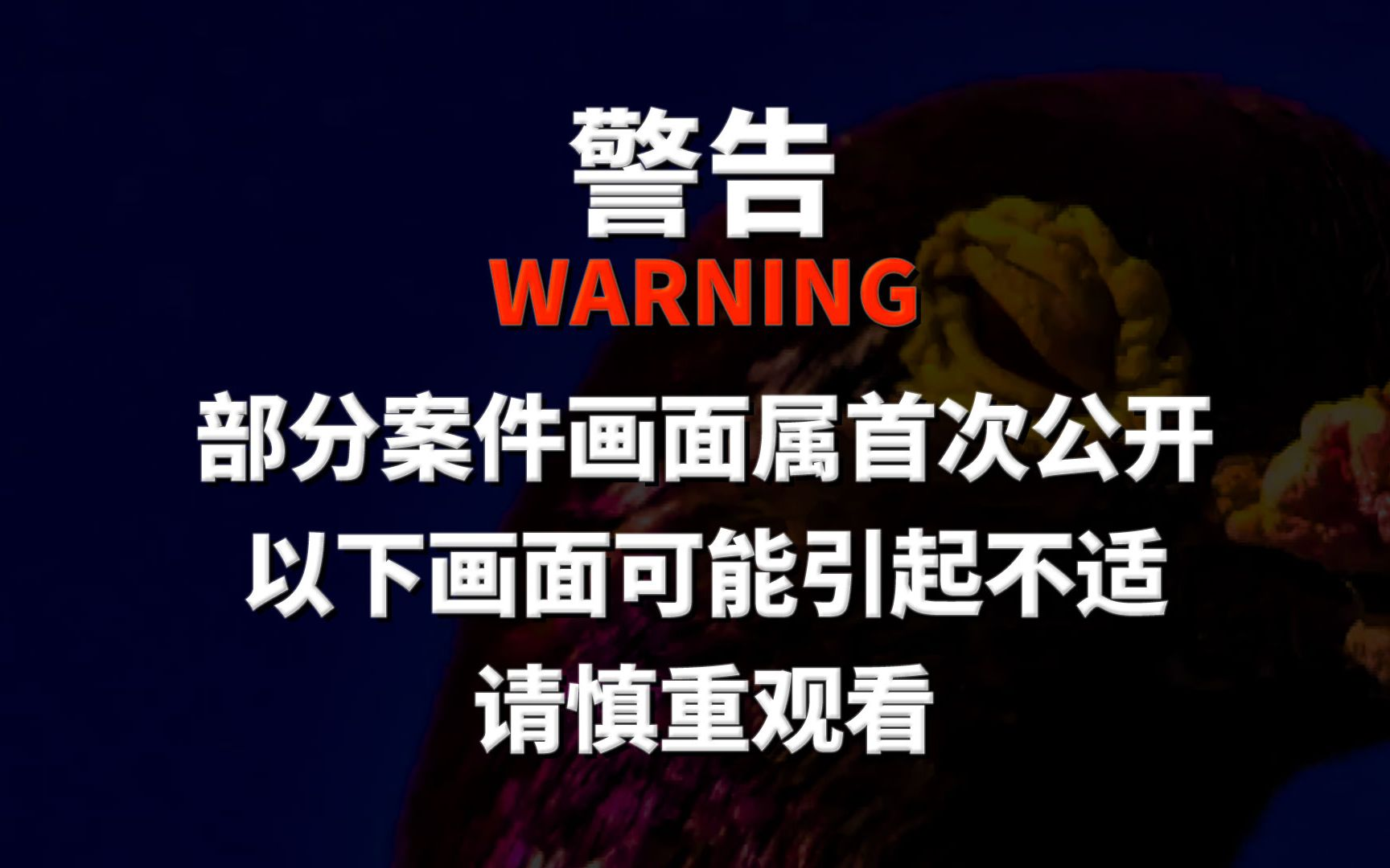 极端主义为祸:中国新疆!【英文纪录片大尺度全方位披露】