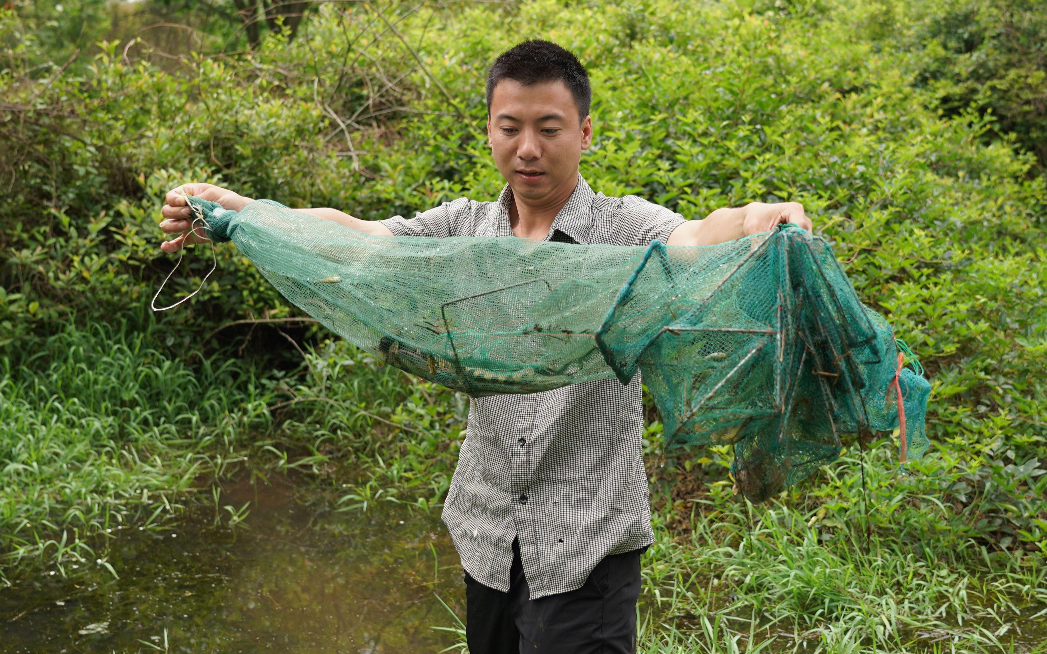 华农兄弟:鱼缸的鱼太少了,再去放地笼,抓点鱼回来