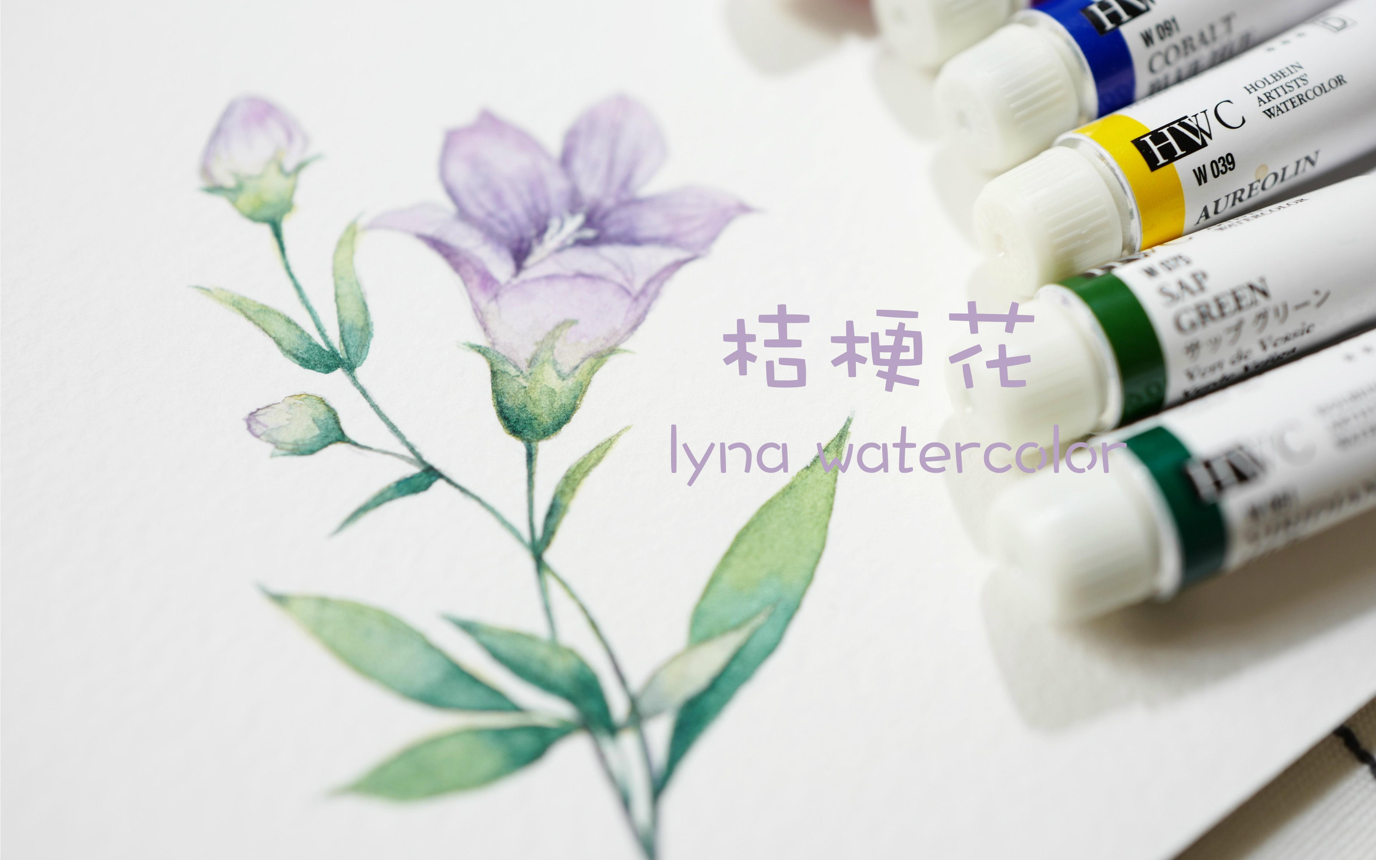 lyna水彩手绘第三十二期—水彩花卉2 桔梗花 线稿过程奉上 附带调色盘