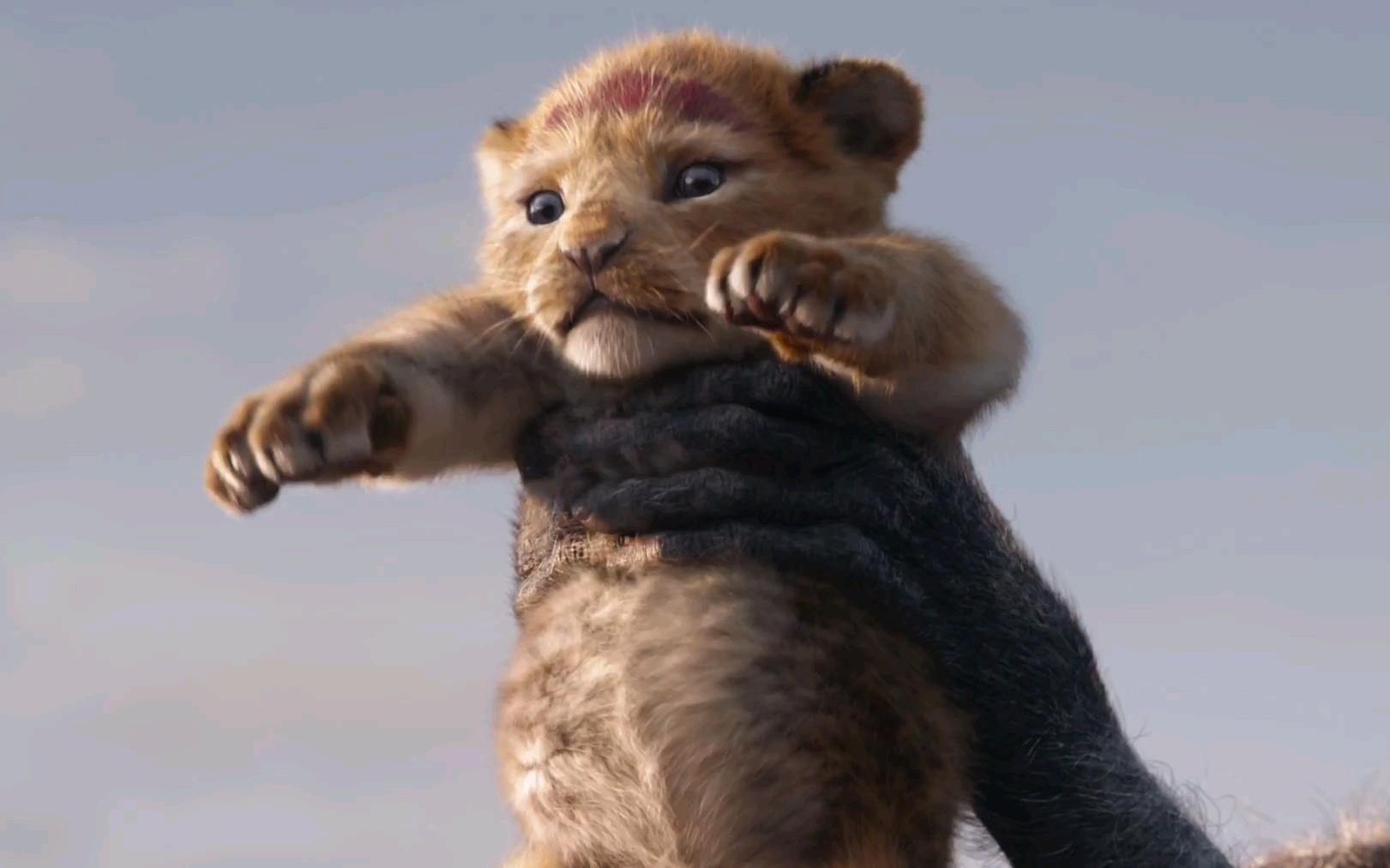 迪士尼真人版《狮子王》释出中文先导预告片,萌哭你的辛巴 !