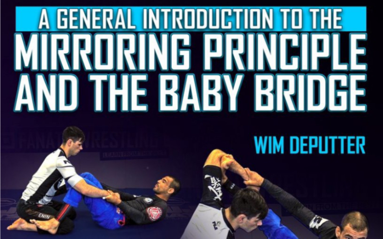 General Introduction To The Mirrorng Principle & The Baby Bridge part 1
