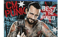 【WWE纪录片】.CM.Punk.Best.In.The.World.2012.