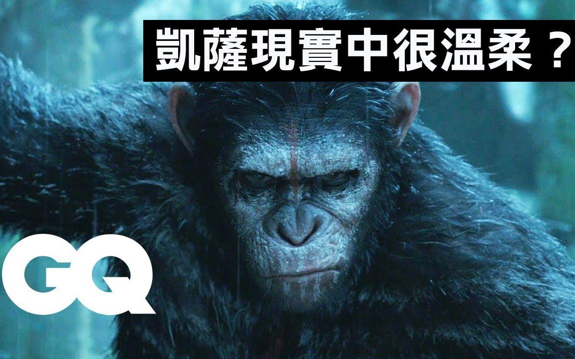 你知道《猩球崛起》的猩猩都是真人演出吗?从电影看人猿进化史 Every Ape in Planet of the Apes Explained 科普长知识 GQ