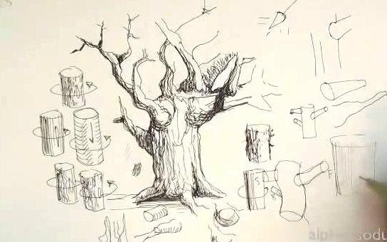 【钢笔画技法】画树系列之二——咋画树木枝干【alphonso dunn】图片