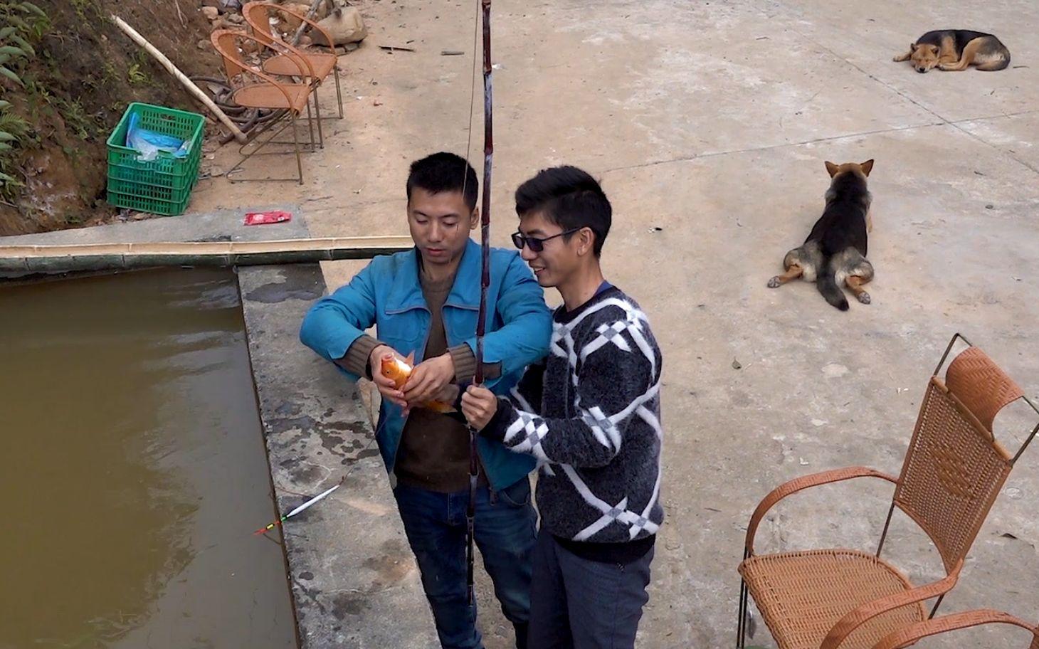 华农兄弟:场里的鱼长肥了,钓条来吃,顺便给老弟做点米酒