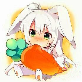 大白兔白不白
