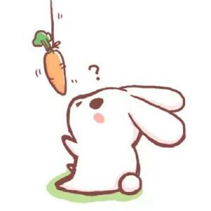 是智障兔吖图片