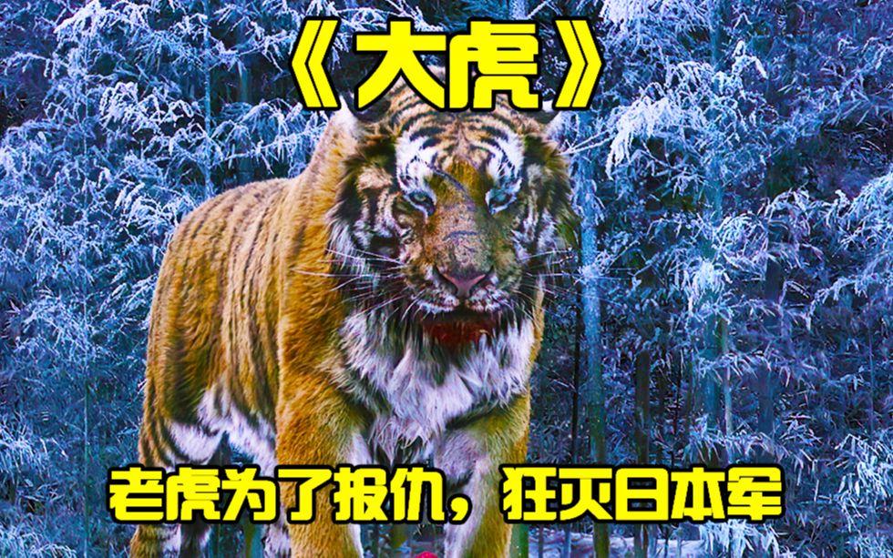 《大虎》高智商老虎,团灭日本兵