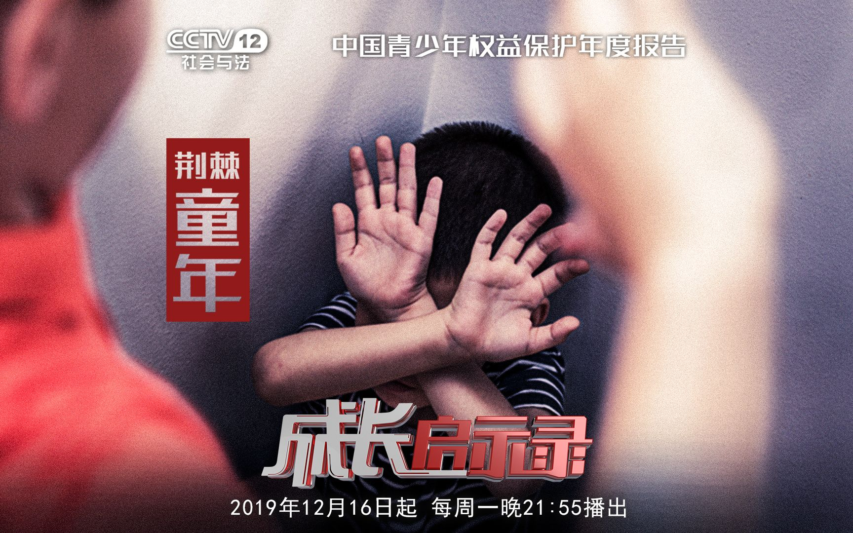【成长启示录④】未成年人家庭暴力调查