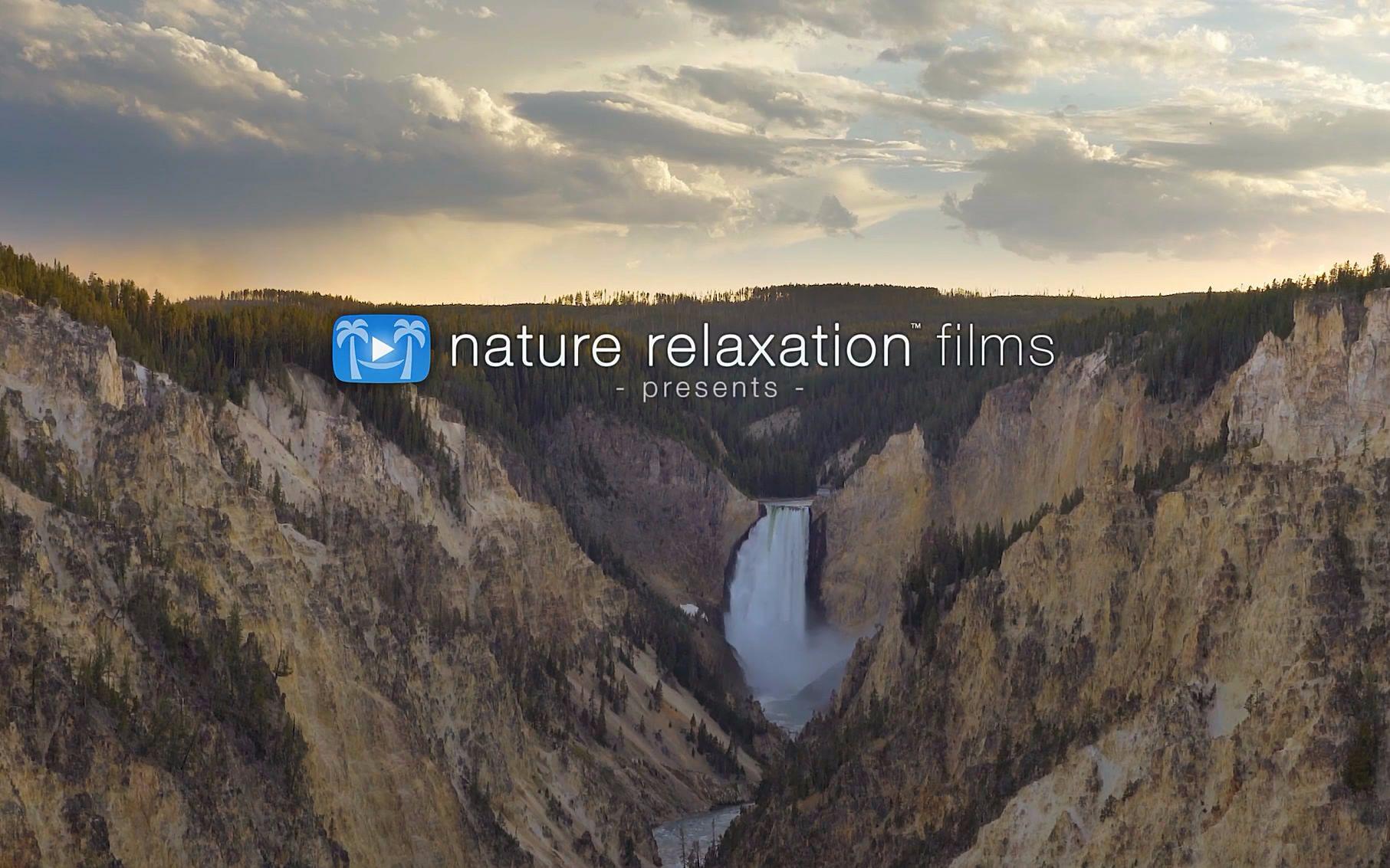 【自然/治愈】黄石公园的夏天-Summer in Yellowstone(大自然的寂静)_哔哩哔哩 (゜-゜)つロ 干杯~-bilibili
