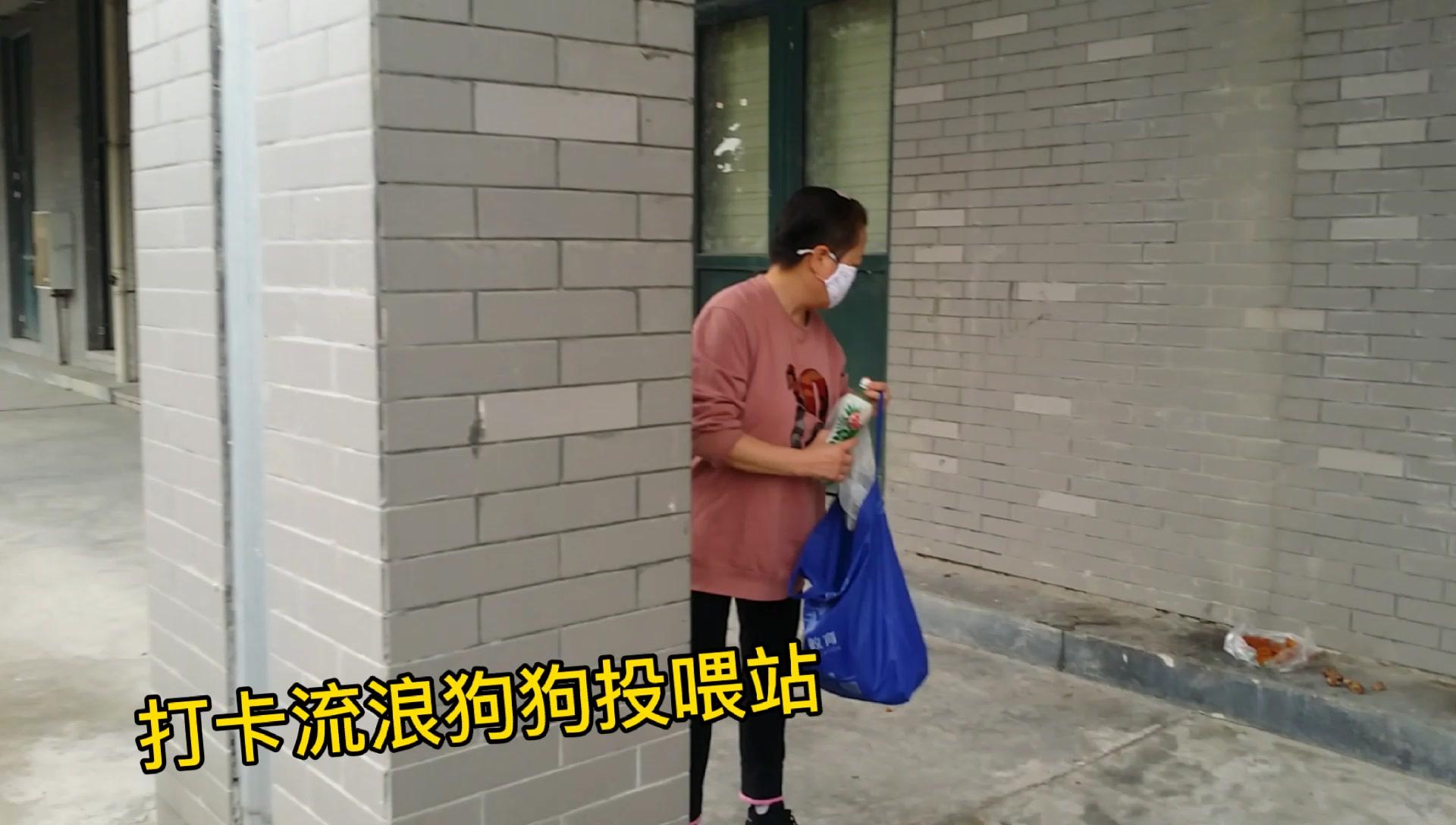 天蓬元帅武功秘籍大公开