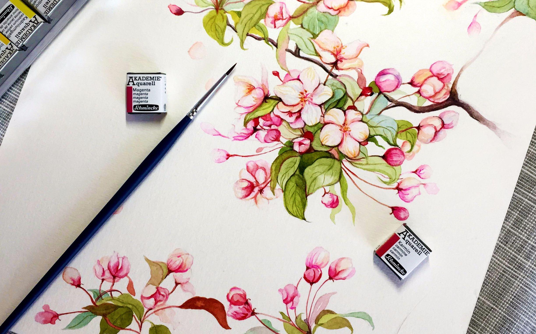 画_【跟我一起画水彩】花卉篇vol.2垂丝海棠超详细视频教程,零基