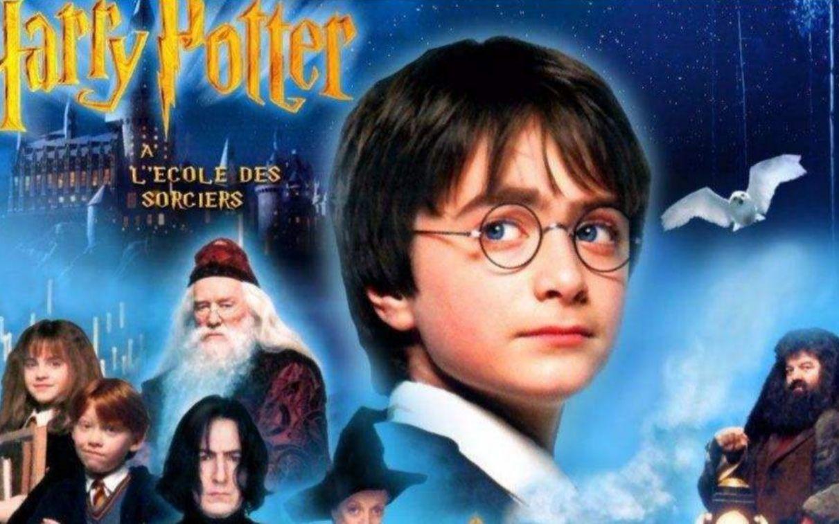 哈利波特与魔法石 国语版_哈利.波特1:哈利.波特与魔法石_视频在线观看-爱奇艺搜索